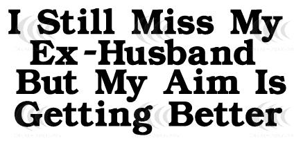 still_miss_my_ex-husband_but_my_aim_is_getting_better