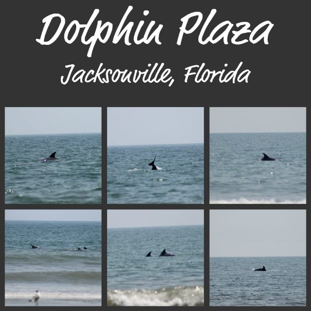 A Weekend In Jacksonville, Florida