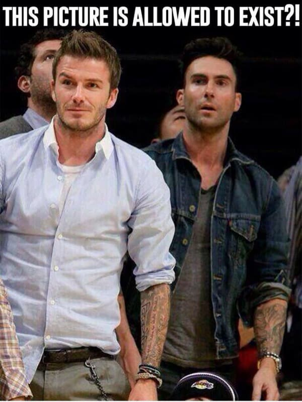 adam levine david bekham