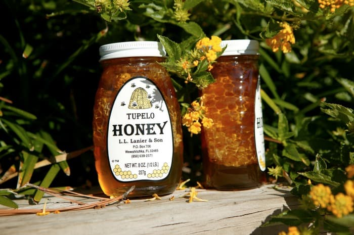 tupelo honey.jpg