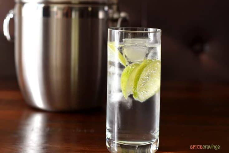 Low Carb, No Guilt Gin Tonic Cocktail