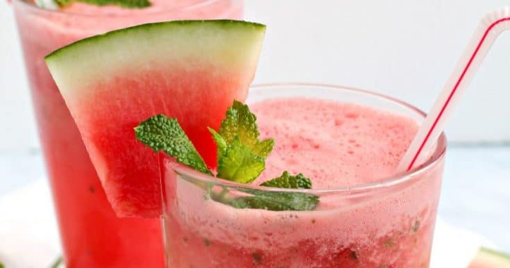 Watermelon Mint Gin Fizz