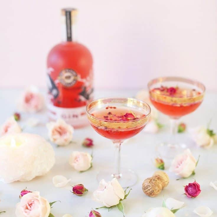 Rose Infused Cherry Gin Fizz